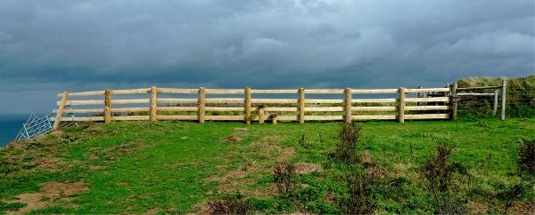 A dividing fence.